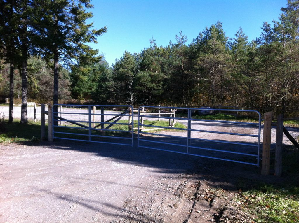 Fences-33