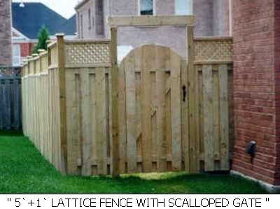 Fences-52