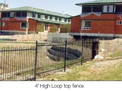 Fences-54