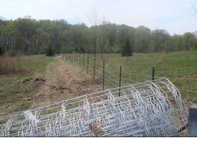 Fences-73